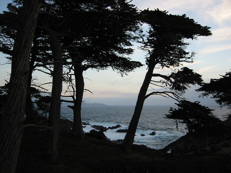 Lone Cypress Point - 5