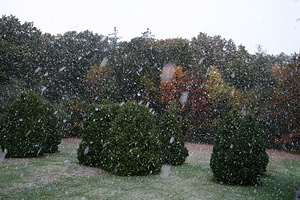 Snow in October 2009