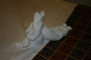 Rabbit Towel Animal 2