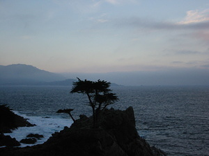 Lone Cypress Point - 1