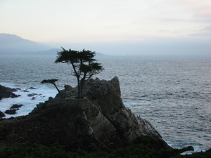Lone Cypress Point - 2