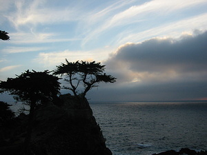 Lone Cypress Point - 3