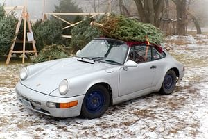 Christmas Tree Pickup in the Porsche